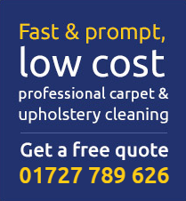 low cost professional carpet cleaning
